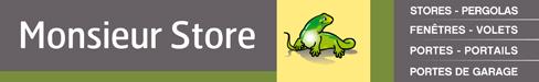 Présentation du logo de Monsieur Store Marseille, représentant un lézard sans griffe et la liste des produits suivantes : stores, pergolas, portes,  fenetres,  volets, portails, porte de garage